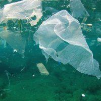 shutterstock-287424425-water pollution